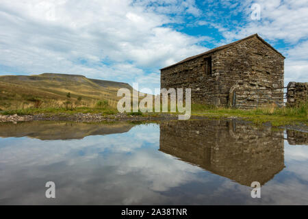 Old Yorkshire stone barn reflected in a puddle with Wild Boar Fell mountain in the background, Mallerstang Dale, Yorkshire Dales National Park, UK lan - Stock Photo
