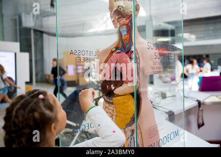 A little girl examines the layout of a human body with internal organs in the scientific-interactive Museum Heureka. - Stock Photo