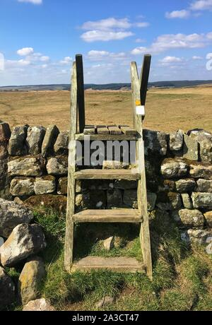 Wooden ladder stile over dry stone wall, on foot path at Haydon Bridge near Hadrians Wall, Northumberland National Park. - Stock Photo