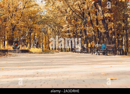 Autumn sunny landscape. Road in the park with benches. Autumn park of trees and fallen autumn leaves on the ground in the park on a sunny October day. - Stock Photo