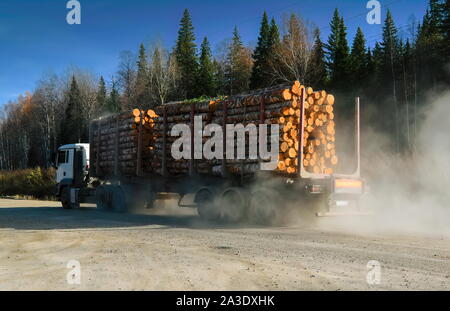Logging truck loaded with freshly cut logs on their way to the mill for processing. - Stock Photo
