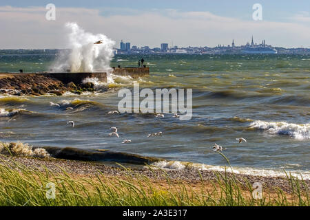 Landscape with a big burst of waves from the pier during the storm as a painted picture. Many seagulls fish near the shore in the waves. - Stock Photo