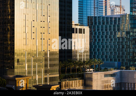 Dense cityscape of new urban development in downtown Los Angeles above a row of palm trees - Stock Photo