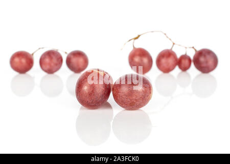 Group of nine whole fresh purple grape rose in row isolated on white background - Stock Photo