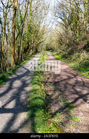 A Tree Lined, Summer Portrait View Along Rolle Road Footpath, Site of the Victorian Rolle Canal, Near The Old Torrington Station & Iron Railway Bridge - Stock Photo