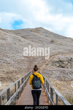 Young woman in yellow sweater on hiking trail on Ponta de Sao Lourenco in Madeira, Portugal. Peninsula in eastern part of the island. Volcanic landscape. Female traveller. Woman hiking, backpacking. - Stock Photo