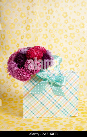 A bouquet of aster Callislephus chinensis in a gift bag on a yellow background - Stock Photo