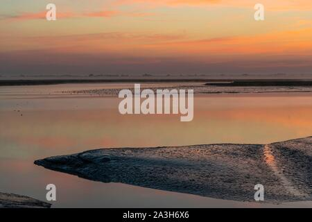 France, Somme, Somme Bay, Saint Valery sur Somme, Dawn on the banks of the Somme - Stock Photo