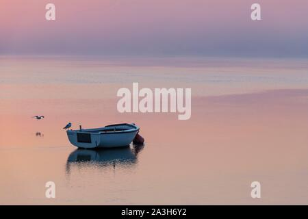 France, Somme, Somme Bay, Saint Valery sur Somme, Dawn on the banks of the Somme where are stranded the boats of fishermen and hunters - Stock Photo
