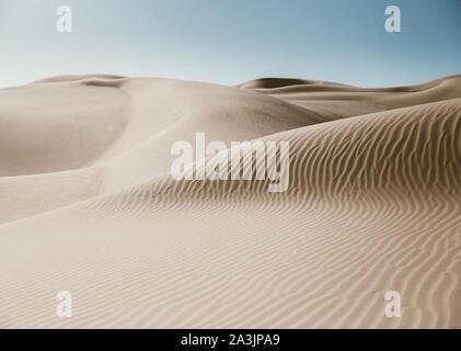 Sand dunes with animal tracks in the desert near Yuma, AZ