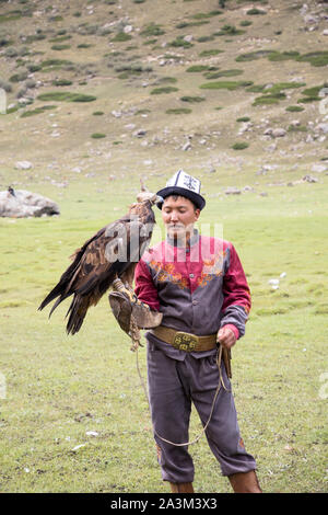 golden eagle used by eagle hunters in kyrgyzstan - Stock Photo