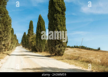 Typical landscapes for Siena Province in Tuscany, Italy. Cypress hills, plowed fields, roads and houses. Begining of autumn season. - Stock Photo