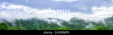 Panorama landscape view on the high mountain see many trees and white fog above the land in khao lak Thailand. - Stock Photo