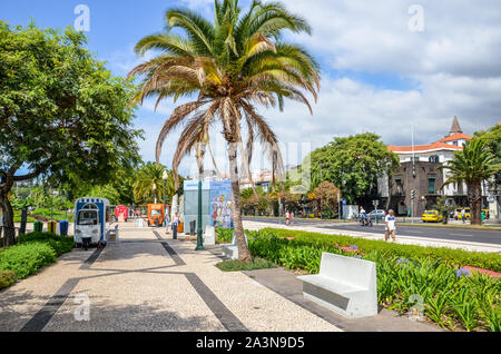 Funchal, Madeira, Portugal - Sep 10, 2019: Beautiful promenade in the Madeiran capital, Portuguese city. Cobbled sidewalk, green vegetation, palm tree and people on the street. Sunny day. Daily life. - Stock Photo