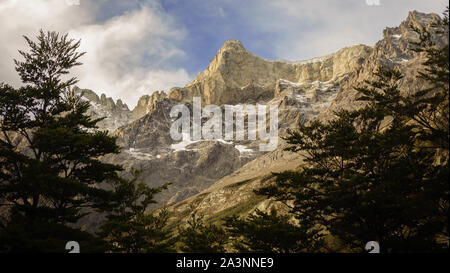 Beautiful mountain landscape. There are large snowy peaks seen from a thick forest full of cypress and pines. Patagonia, South America - Stock Photo