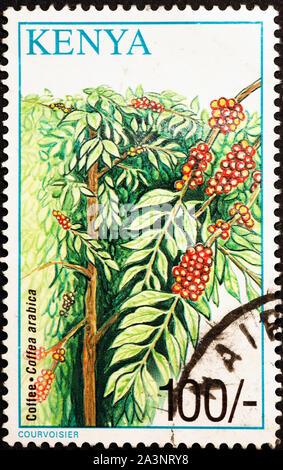 Coffee plantation on postage stamp of Kenya - Stock Photo