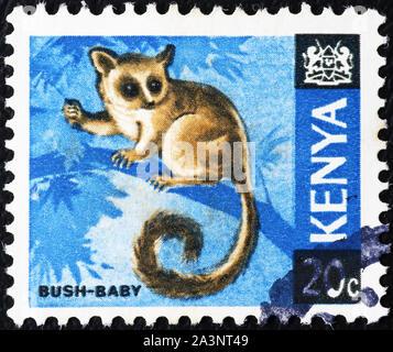 Bush-baby on kenyan postage stamp - Stock Photo