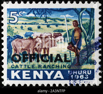 Kenyan shepherd and cattle on vintage postage stamp - Stock Photo