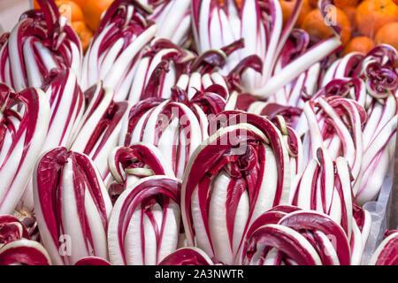 Radicchio tardivo, red salad healthy vegetables on the market. - Stock Photo