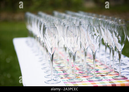 Full table of champagne glasses in the wedding garden ready to be filled for guests - Stock Photo