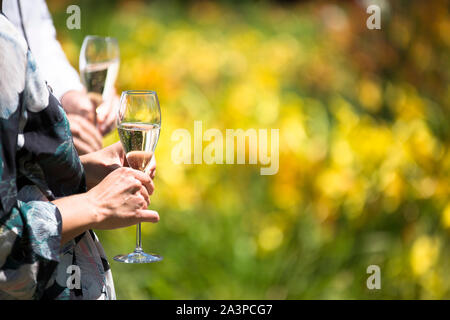 Wedding guests enjoying the garden holding glasses of champagne - Stock Photo