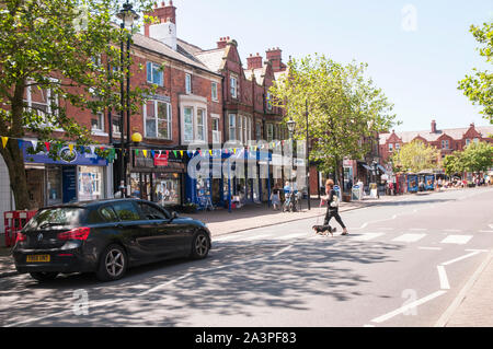 Car waiting whilst a lady with a small dog walks across the road on a Zebra Crossing on a sunny day in Lytham Lancashire England UK - Stock Photo