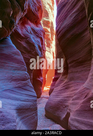 Colorful canyon walls in narrow slot canyon Wire Pass, Paria Canyon-Vermilion Cliffs Wilderness, near the Utah-Arizona border, southern Utah, United S - Stock Photo