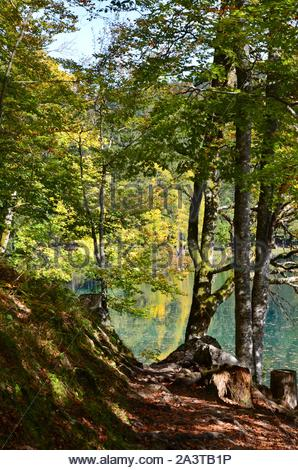 Enchanting footpath through the forest along the shore of lakes Laghi die Fusine (Weissenfelser Seen) in Northern Italy, Julian Alps, autumn landscape - Stock Photo