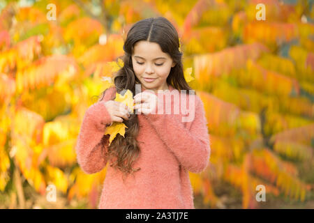 Natural beauty. Small girl wear autumn leaves in natural hair. Little child on natural landscape. Idyllic autumn nature. Natural cosmetics. - Stock Photo