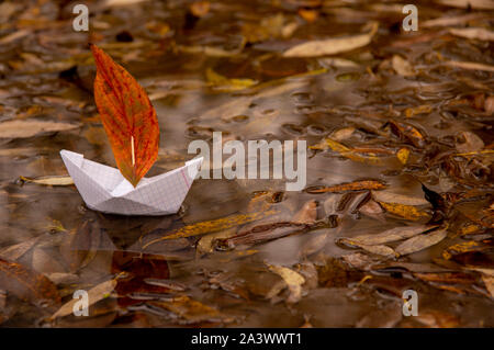 A paper boat floats in a puddle, an oak red leaf instead of a sail, around the fallen autumn leaves lie - Stock Photo