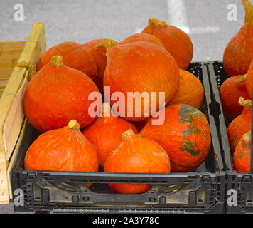Pile of bright orange mid size pumpkins for sale in Europe. Local produce on display from the organic farms in southern France. - Stock Photo