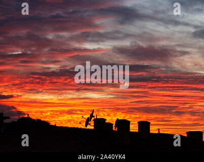 Sky in flame over Bologna, Italy. - Stock Photo