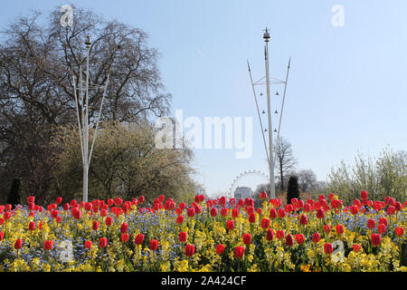 Picture of London Eye view from Buckingham Palace. - Stock Photo