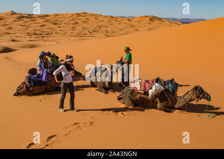 Tourists take a rest with their camel train as they trek through the Erg Chebbi desert. - Stock Photo