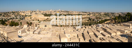 Large Panorama Of Jerusalem  Streets and The Old From Cementary Near The Mount of Olive - Stock Photo