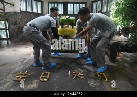 Chinese zoo workers prepare bamboo shoots and ice cakes for giant panda brothers Chengjiu and Shuanghao during a celebration for their five years birt - Stock Photo