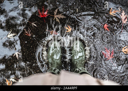 Feet in olive green rubber boots standing in a puddle with fallen leaves and making splashes. - Stock Photo