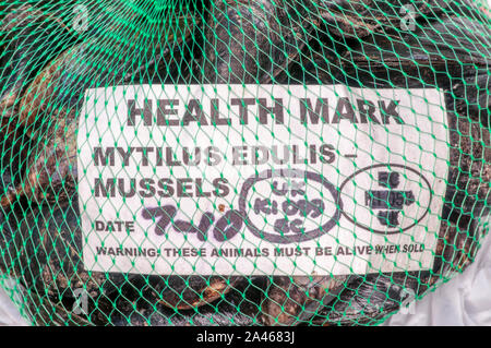 Sign on a bag of Brancaster mussels includes their Latin name, Mytilus edulis, & warns These animals must be alive when sold. - Stock Photo