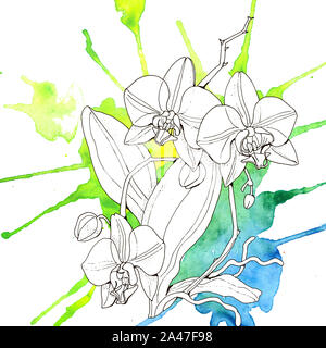 Watercolor orchid flowers seamless pattern. Hand drawn wallpaper design. - Stock Photo