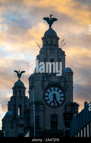 Liver bird statues on top of the Royal Liver Building in Liverpool - Stock Photo