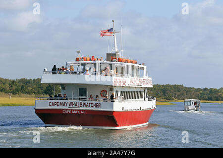 A boat from The Cape May Whale Watcher fleet. A popular sightseeing  tour in Cape May, New Jersey, USA - Stock Photo