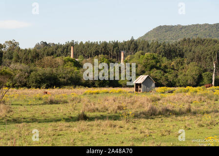 a small wooden stable built amid the flowering field of daisy flowers. In the background of the scene can be seen the towers of an abandoned factory. - Stock Photo