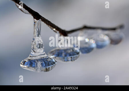 Close up of icicles on a frozen branch over the water surface of a river, abstract winter background - Stock Photo