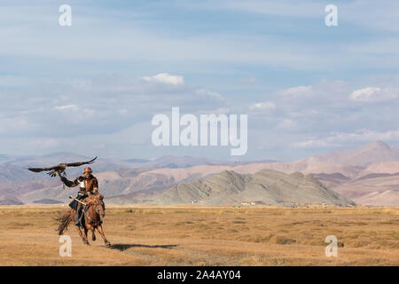 Kazakh eagle hunter galloping through shallow river water with his golden eagle. Ulgii, Western Mongolia. - Stock Photo