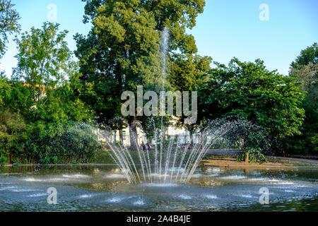Lake with fountain in Jardin Le Coq (jardin des plantes de Clermont-Ferrand) in Clermont-Ferrand) France - Stock Photo