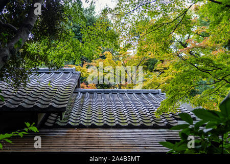 The Traditional Black Roof Tiles and Green Forest on the Background. Details of the Pitched Roof - Stock Photo