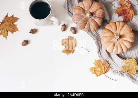 Autumn, fall decorative floral frame, banner. Composition of orange pumpkins, colorful maple leaves, cotton plaid, cup of coffee and acorns isolated - Stock Photo