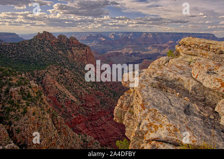 Canyon view from East Buggeln Hill, South Rim, Grand Canyon, Arizona, United States