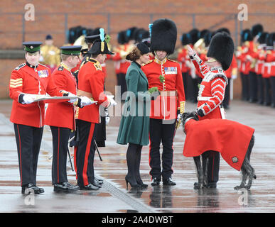 Photo Must Be Credited ©Kate Green/Alpha Press 077017 17/03/2013 Kate Duchess of Cambridge Katherine Catherine Middleton presents the last sprig of shamrock to the regiment's new mascot, seven month old Irish wolfhound Domhnall, who was carrying out his first public engagement at the St Patricks Day Parade held at Mons Barracks in Aldershot, Hampshire - Stock Photo