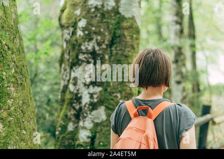 Female hiker walking on footpath through woods, rear view of woman hiking in forest